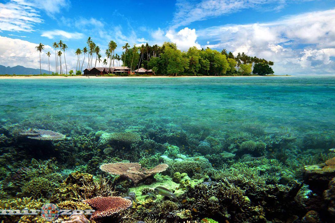 Сколько островов на земле