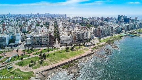 «Что не так в Уругвае ?»